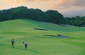 Sightseeing and Personalised Tours Golf Courses